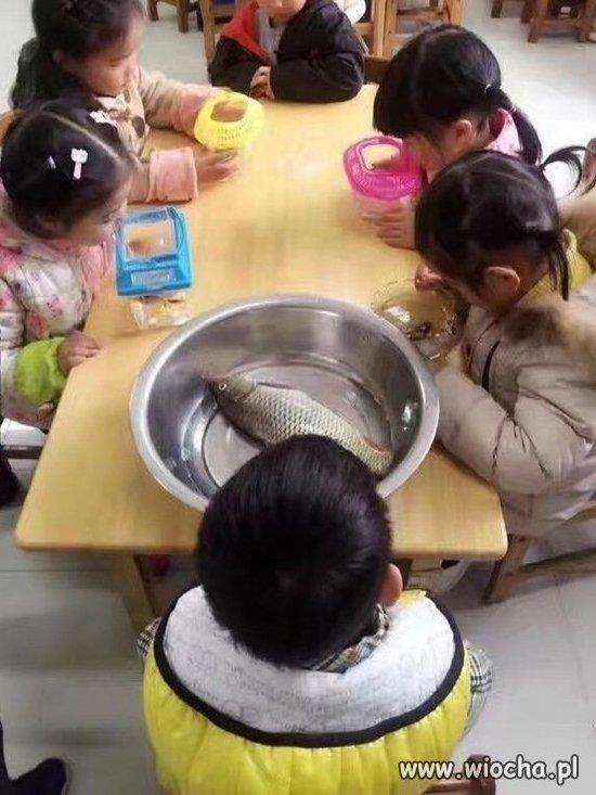 Niech każde z dzieci przyniesie swoją rybkę