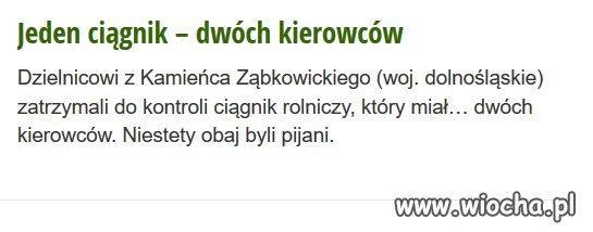 Dolny Śląsk rządzi