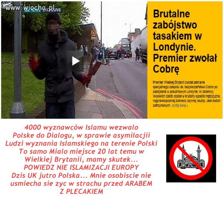 Wiocha za Islamizacje Europy