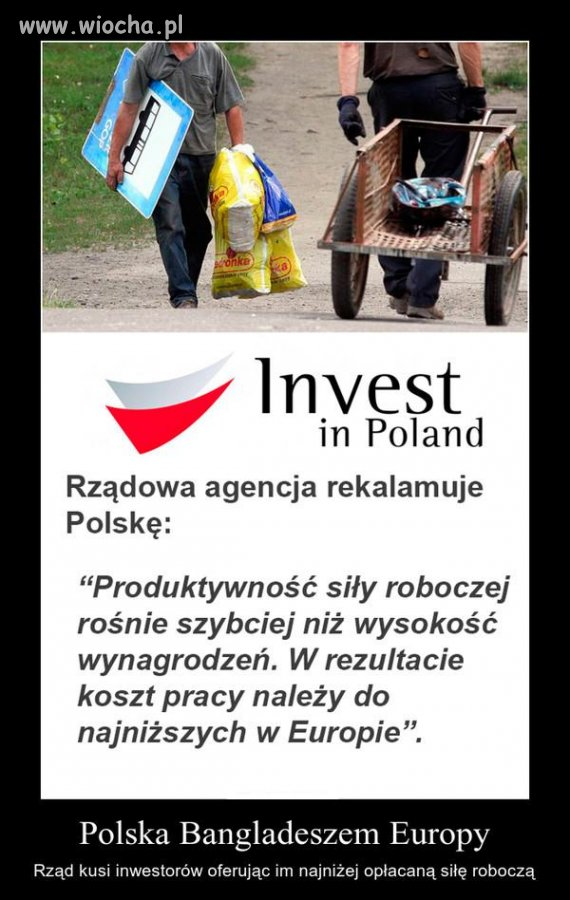 Polska Bangladeszem Europy