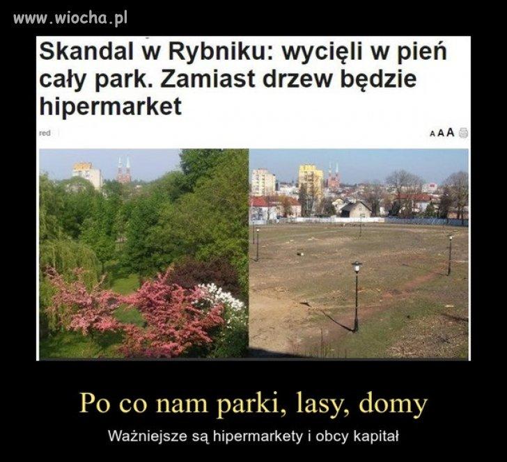 Co tam jakiś park