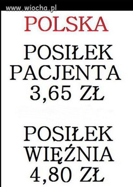 Polska kraj absurdu