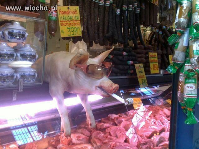 Mięsny sklep