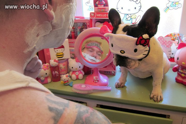 Fan Hello Kitty