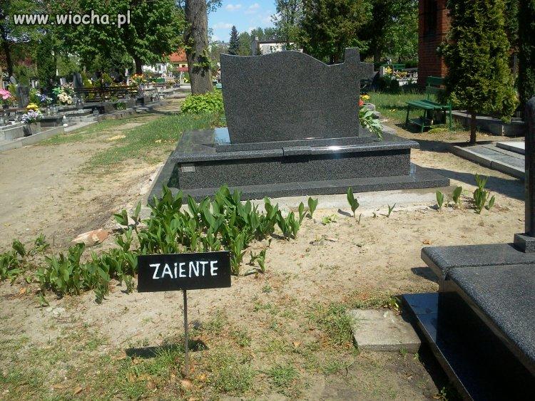 Tabliczka na cmentarzu w Namys�owie.