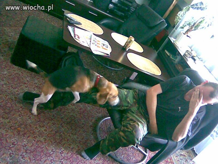 Pochwalić się na Facebooku że cię pies pie..li ...