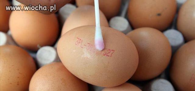 Tak oszukują na wiejskich jajach