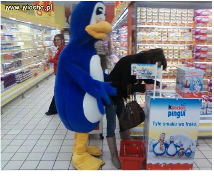 Takie tam z pingwinem