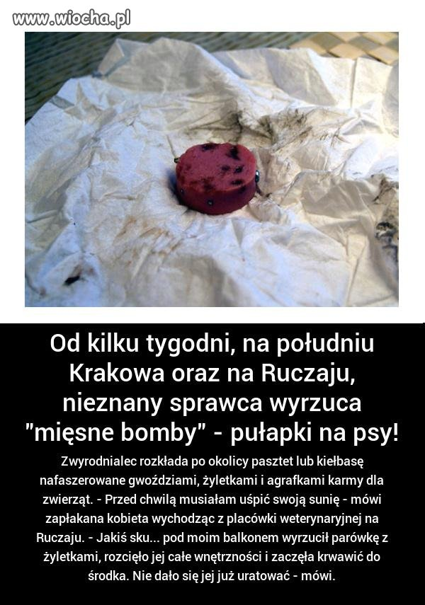 Taką 'mięsną bombę' trzeba dać temu idiocie.
