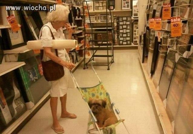 Czy ty też chodzisz z twoim psem
