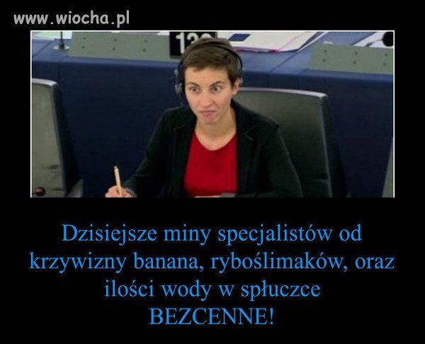 Miny europarlamentarzystów.