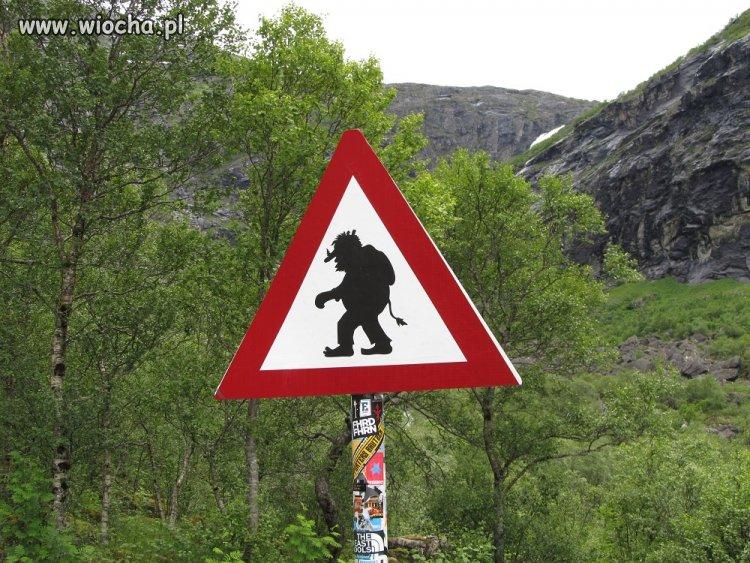 W Skandynawii w nie wierzą