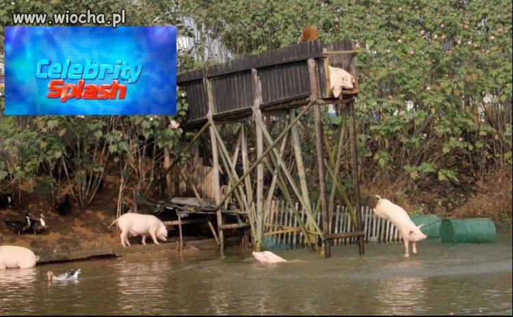 Celebryci skaczą do wody!