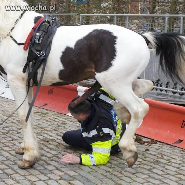 Policjant brutalnie spałowany