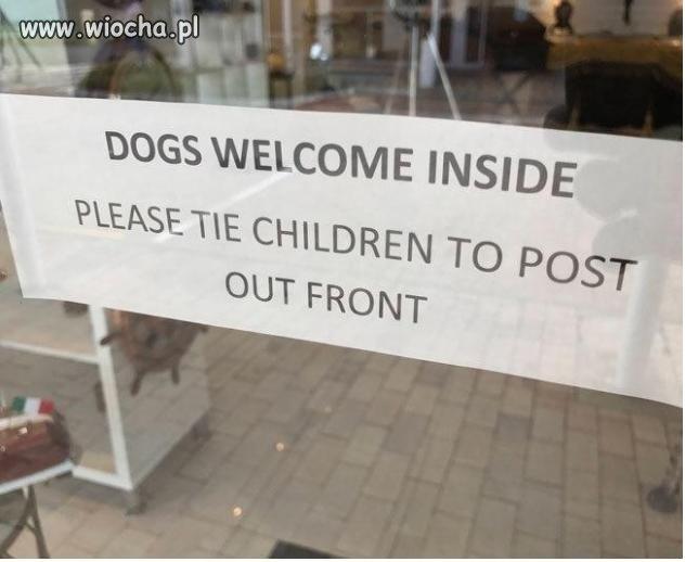 Psy mile widziane,dzieci proszę przywiązywać