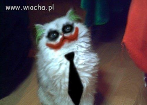 Prawie jak Joker ...