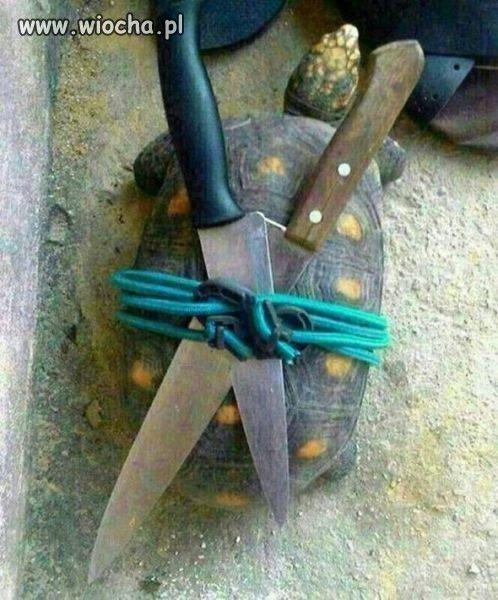 ��w ninja