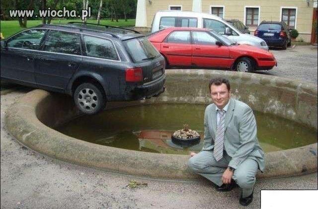 Mistrz parkowania samochodu