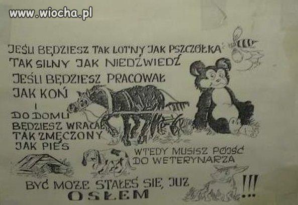 Wiochapl Absurdy Polskiego Internetu Nasza Klasa Facebook