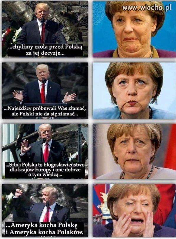 Trump vs