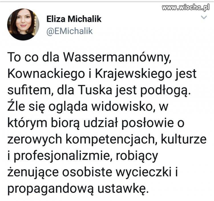 Pani Eliza