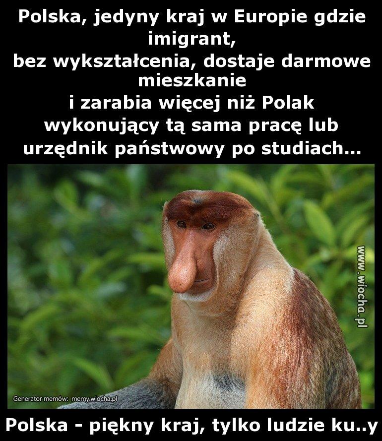 Polska, jedyny kraj w Europie gdzie imigrant,