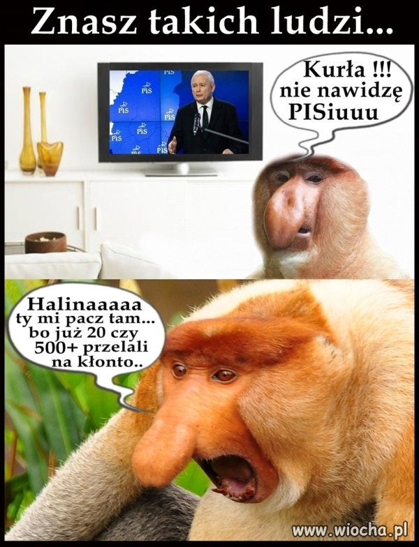 Janusze...