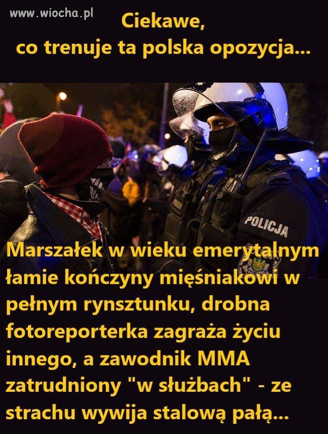 Ciekawe co trenuje ta polska opozycja...