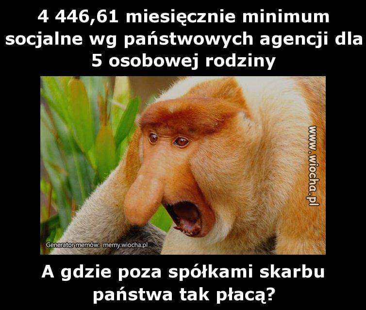 4 446,61 miesięcznie minimum socjalne wg