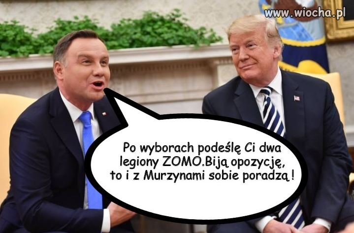 Sojusznik +