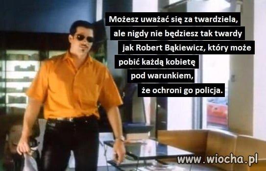 https://img.wiocha.pl/images/1/5/15ec4fb39560a48dc94c2d0fc609ae47.jpg