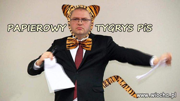 Papierowy tygrys...