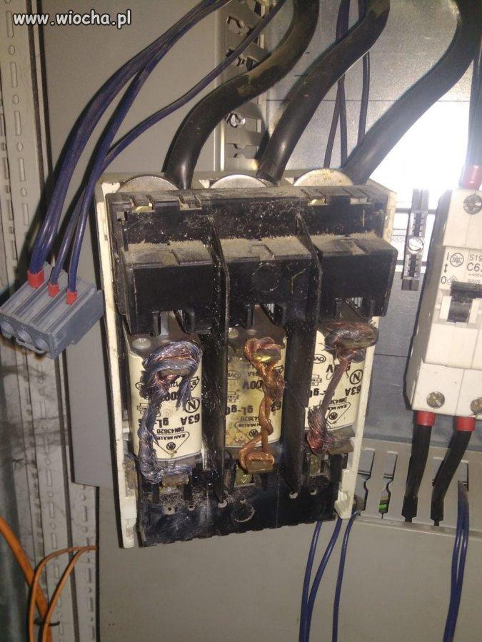 Elektryk samouk