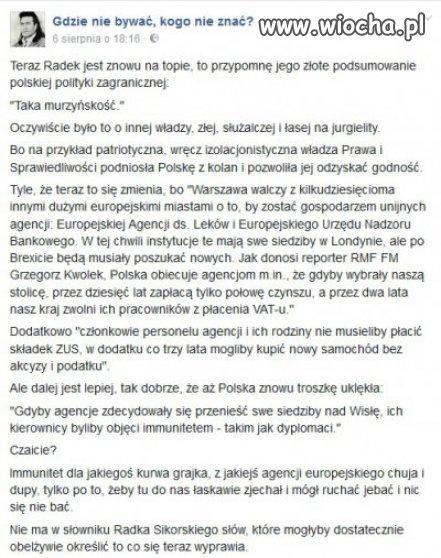 Polska polityka wstaje z kolan?