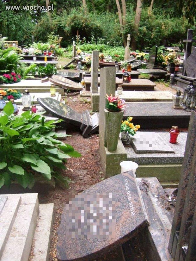 42 zniszczone nagrobki na cmentarzu w Szczecinie