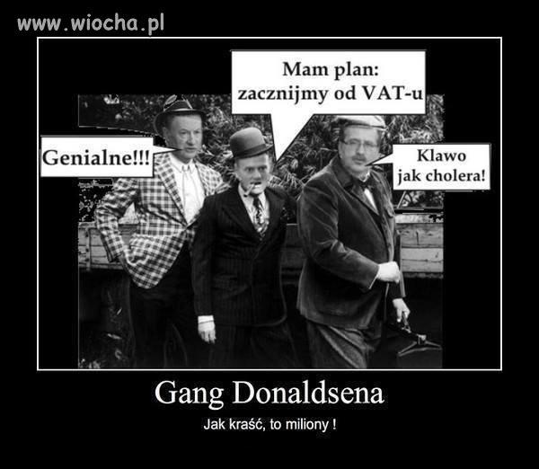 Nowy gang