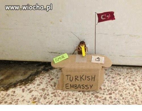Turecki ambasador!