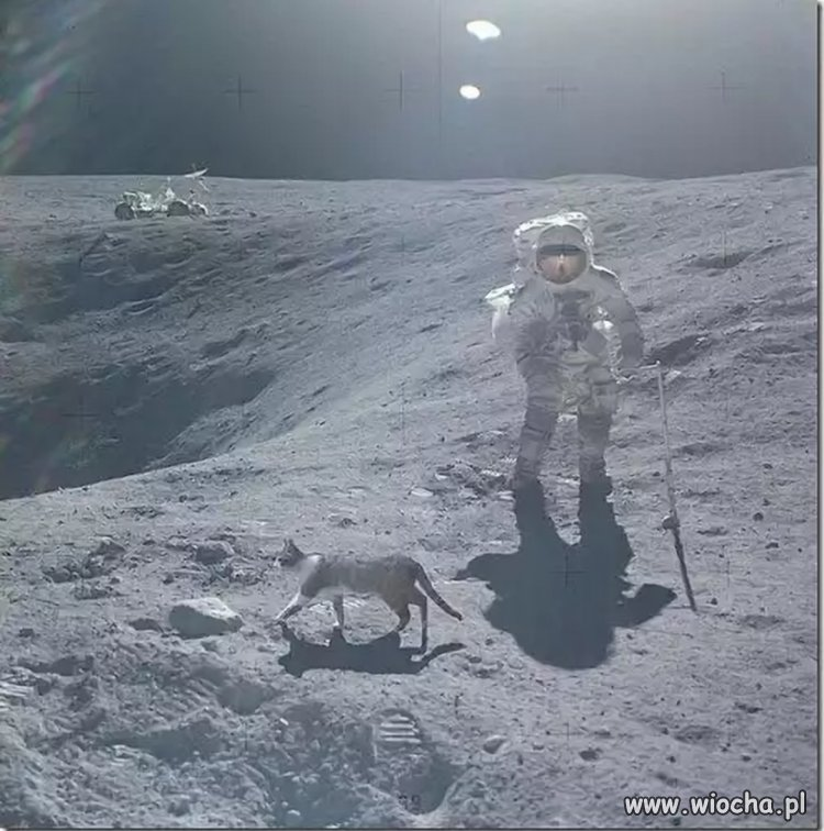 Z tajnych archiwum NASA.