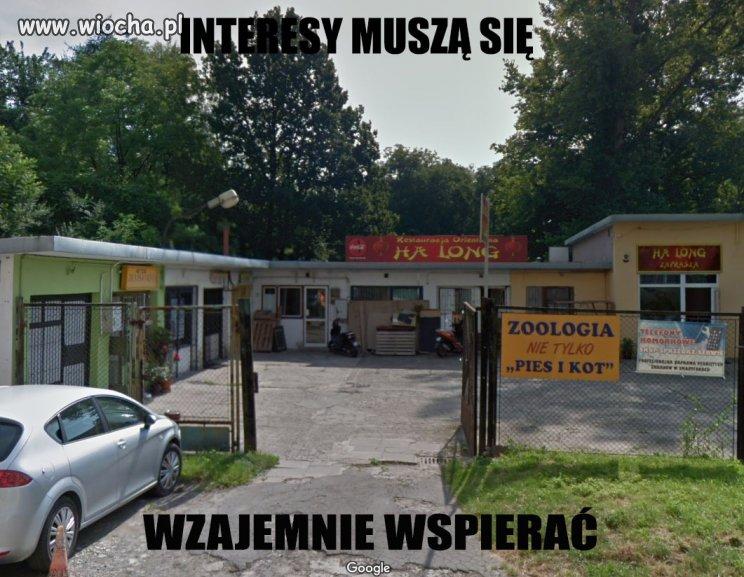 INTERESY