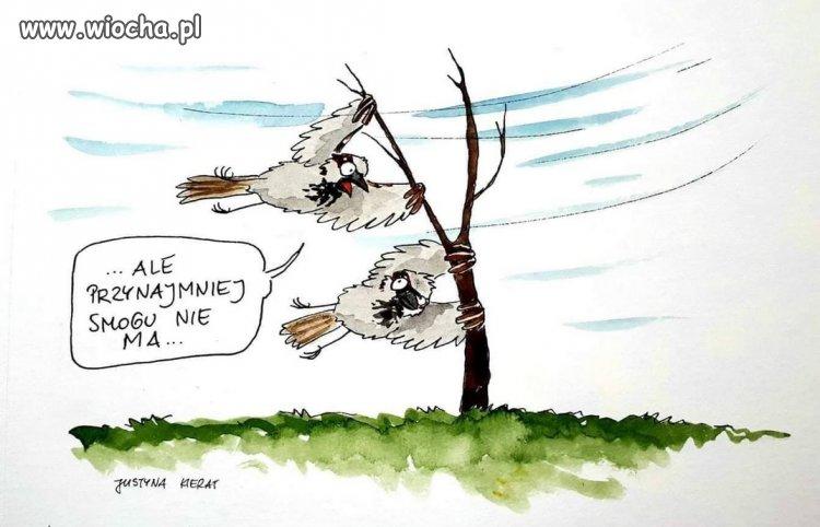 Dzisiaj w Krakowie...