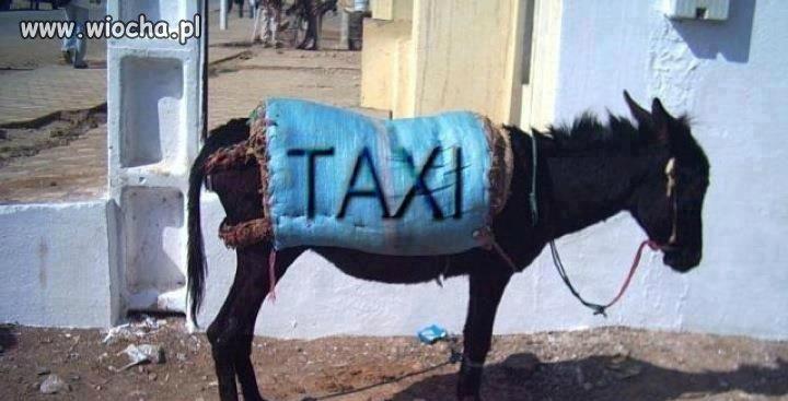 Taxi ekologiczne.
