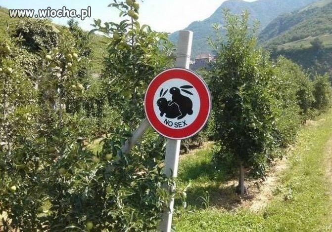 Nowy znak. Zabrania się jedzącym krowę.