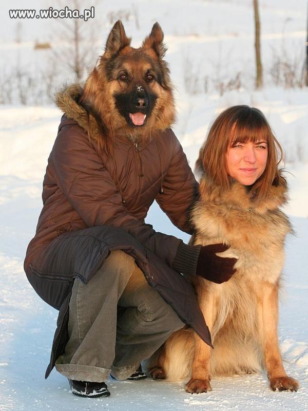 Pies z panią