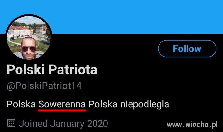 Polski idiota