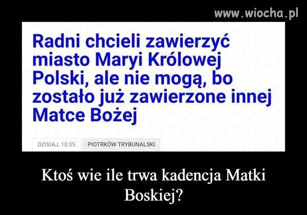 Kiedy myślałeś że głupota w Polsce osiągnęła dno