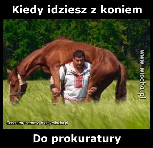 Kiedy idziesz z koniem