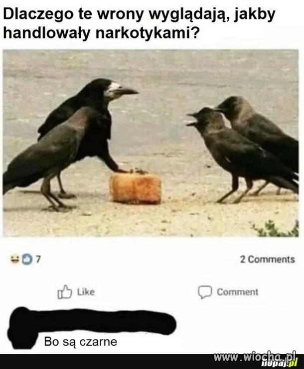 Czarna mafia