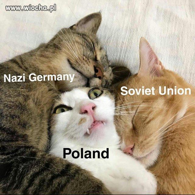 Kocia Historia Polski