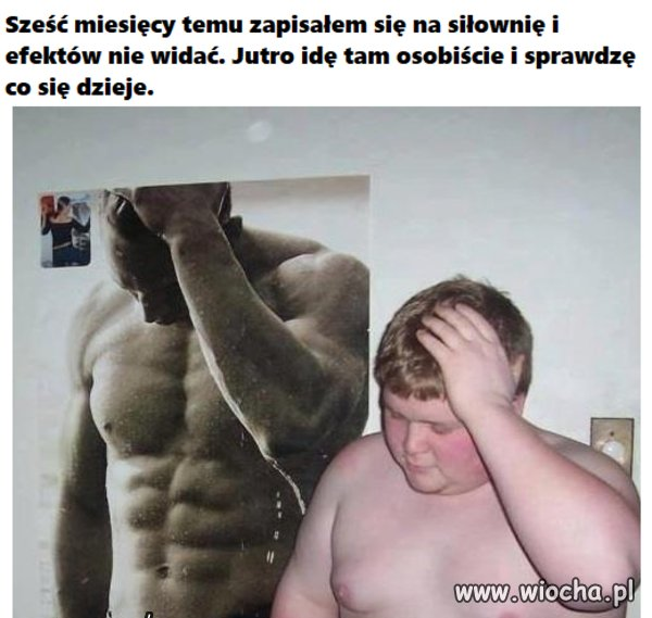 Efekty...