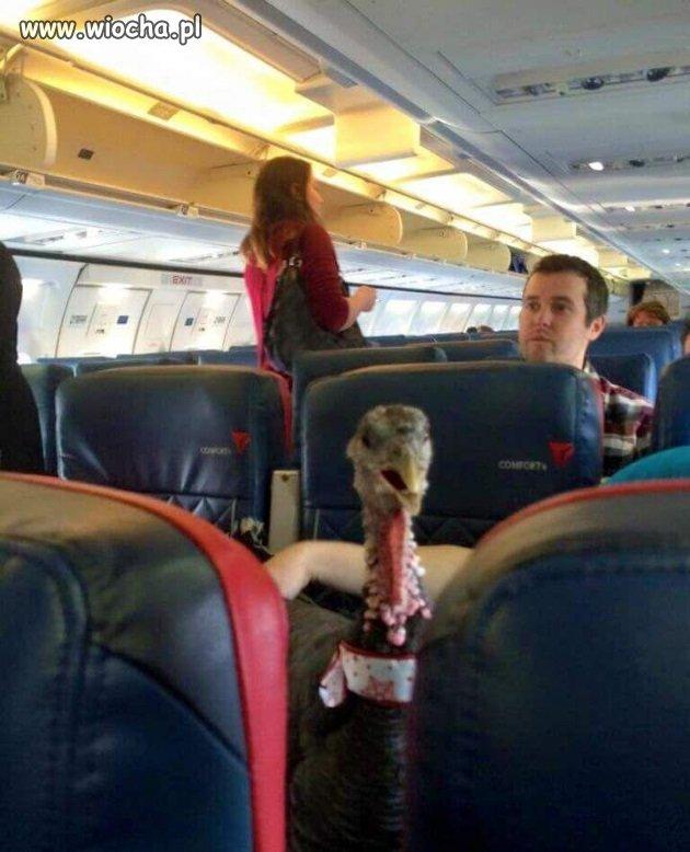 Tymczasem w samolocie